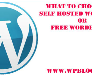 Self Hosted WordPress Or Free WordPress?